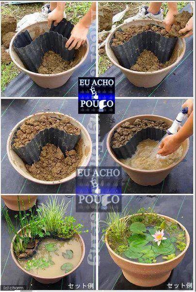 Vasca piante acquatiche fai da te deh giardino for Vasca per stagno