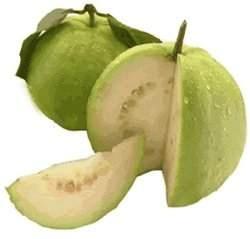 Guavas from Overland Park, Kansas. http://www.farmersmarketonline.com/guavas.htm