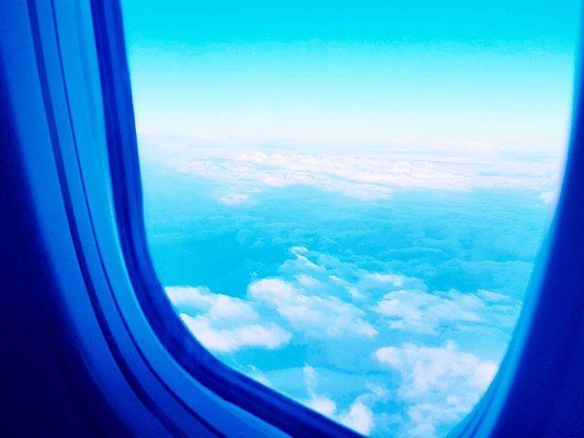 ✈ . . . . #daily #데일리 #일상 #photo #photography #여행 #여행스타그램 #blue #niceview #하늘 #sky #풍경사진 #풍경스냅 #비행기 #f4f #likeforlike #snapshot #travelphotography #travelgram #travelingniceview #여행스타그램 #비행기 #f4f #sky #daily #travelphotography #travelgram #풍경사진 #일상 #하늘 #likeforlike #여행 #snapshot #photography #데일리 #photo #blue #traveling #풍경스냅 #travel #tourism #travelgram #meetingprofs #eventprofs #meeting #planner #events #eventplanner #popular #trending #micefx [Visit www.micefx.com for more...]