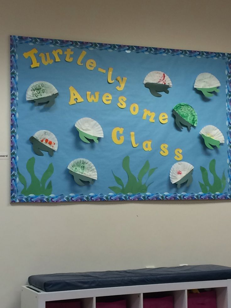 Classroom Decoration Ideas With Paper ~ Best ideas about turtle bulletin board on pinterest