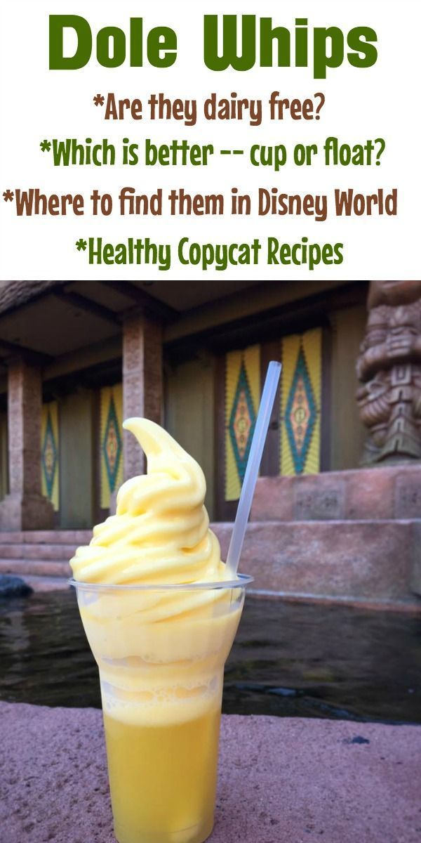 Dole Whip: Floats, Disney World Locations, and How to Make it at Home | Dole  whip disney world, Disney world secrets, Dole whip disney
