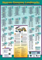 Great poster (ordered one for my room just the other day) and lots of good stuff on the website for those who teach genetics or forensics.