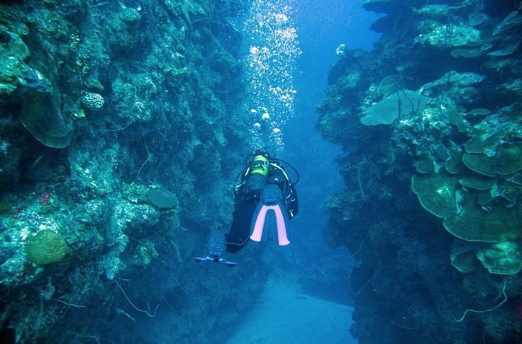 Scuba Diving Con Dao Island, Con Dao Scuba Divinghttp://waterpuppettours.com/news-detail/con-dao-archipelago/ The remote Con Dao group of islands, about 180 km from Vung Tau, has a local population of around 5,000. The main island, Con Son, was the site of a much-feared former penal colony until 1975