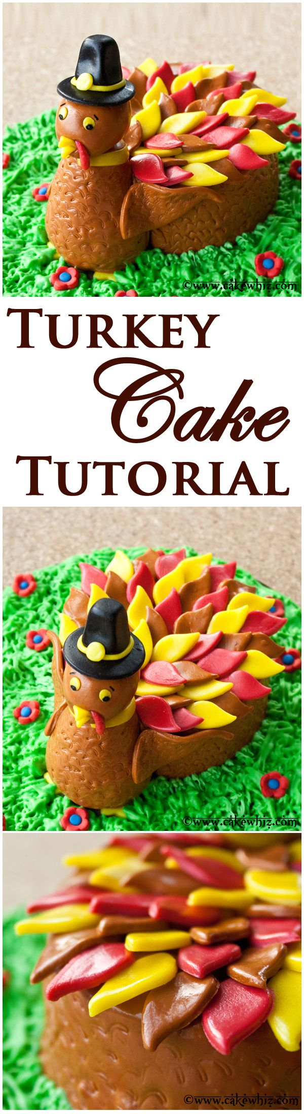 Learn to make a cute TURKEY CAKE for Thanksgiving with this step-by-step tutorial! It's sure to be a hit at your party! From cakewhiz.com