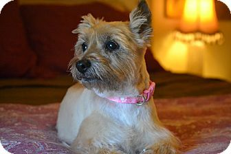 """Madison """"Maddy"""" 