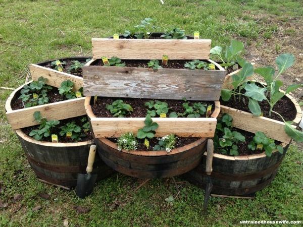 139 best images about whiskey barrels on pinterest for Diy wine barrel planter