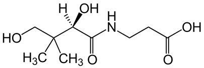 Skeletal formula of (R)-pantothenic acid