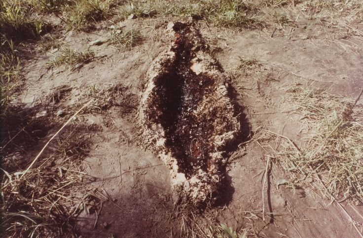 """Ana Mendieta (Cuban-American, 1948 – 1985) / """"Untitled,"""" from the """"Silueta"""" series, 1978 / Unique lifetime color photograph mounted on board documenting silueta with fire and gunpowder, Iowa / Des Moines Art Center Permanent Collections; Purchased with funds from Rose F. Rosenfield, 1997.78 / Photo Credit: Rich Sanders, Des Moines"""