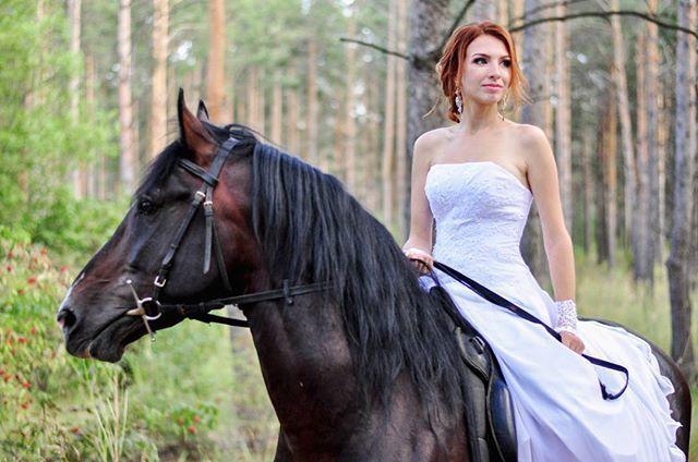 Instagram media by helenmartynova13 - Охота иметь свою конюшню,чтобы каждый день видеть такого красавца  #люблюлошадей #лошадь #покатушки #лето2016 #свадьба