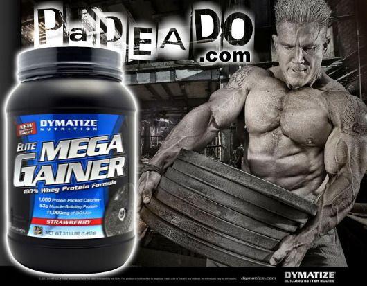 Elite Mega Gainer (3.2 Lbs) - Dymatize: http://papeado.com/tienda/ganadores-de-masa/206-elite-mega-gainer-32-libras-dymatize.html ---- www.PAPEADO.com - Suplementos Alimenticios (Venezuela) * Como pagar: http://papeado.com/tienda/content/2-aviso-de-pago * Flete: http://papeado.com/tienda/content/1-entrega * Nuestros contactos: http://papeado.com/tienda/content/4-sobre-papeado