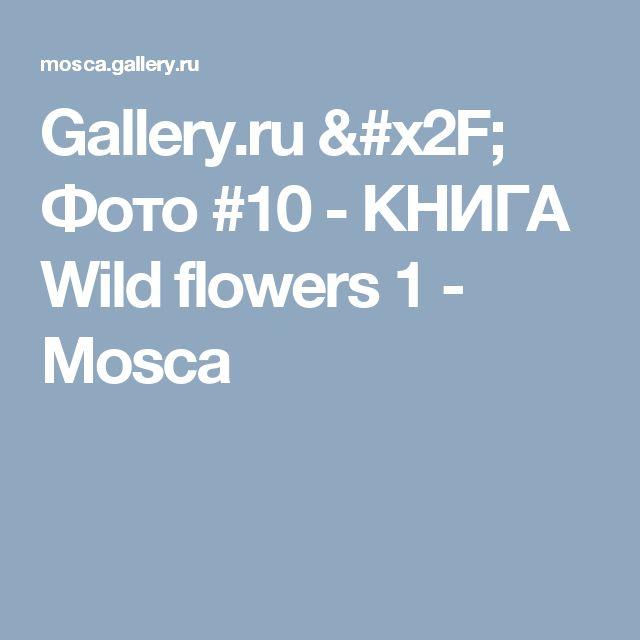 Gallery.ru / Фото #10 - КНИГА    Wild flowers 1 - Mosca