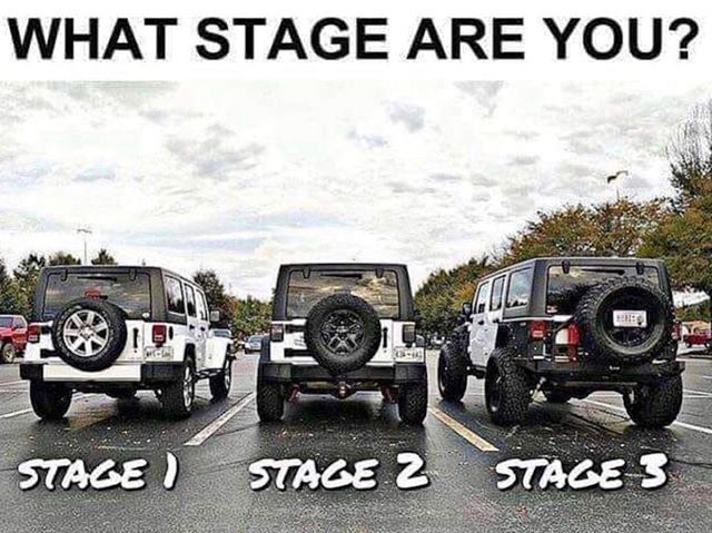 What Stage Are You Champion 4x4 Where Champions Are Built 786 502