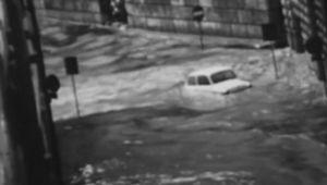 firenze 1966 alluvione, auto trascinate dalla furia delle acque