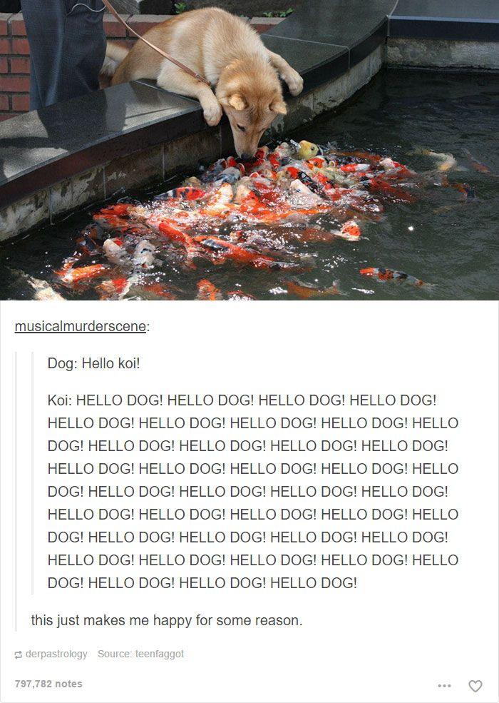 30 images commentées de chiens absolument hilarantes (web page 2)