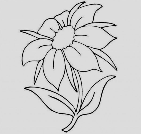 Easy Things To Draw When Bored34 Jpg 600 570 Pixels Easy Flower