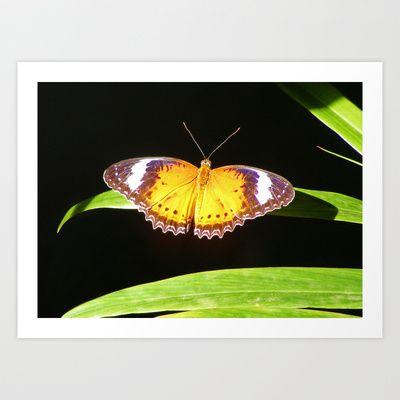 Butterfly 6 Art Print by Sheridan van Aken - $20.80