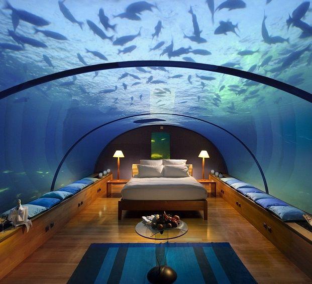 196 Best Picturesque Aquariums Images On Pinterest