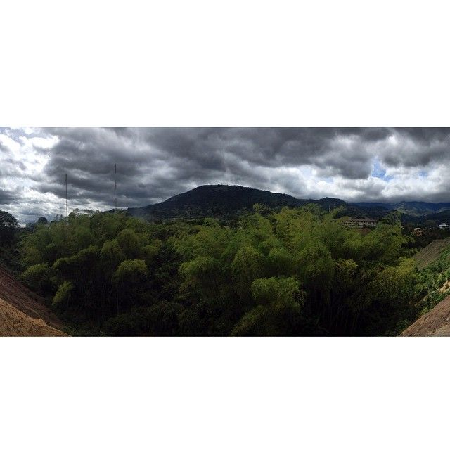 Hometown  #Quindio #Colombia #green #nature #home