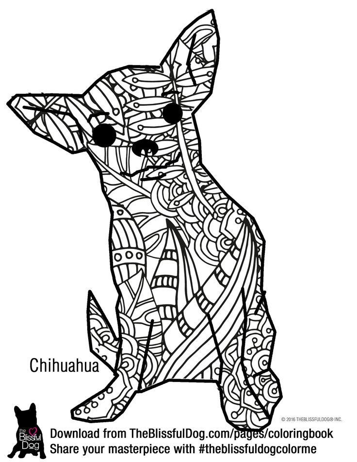 1000 images about mandaly zv ata on pinterest for Chihuahua coloring pages