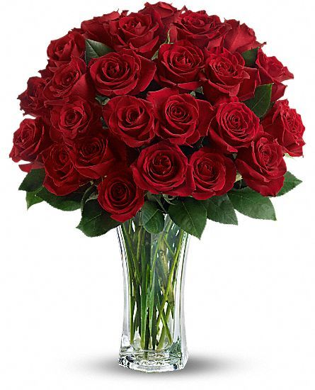 Love and Devotion - Long Stemmed Red Roses Flowers  Why YES , of course !