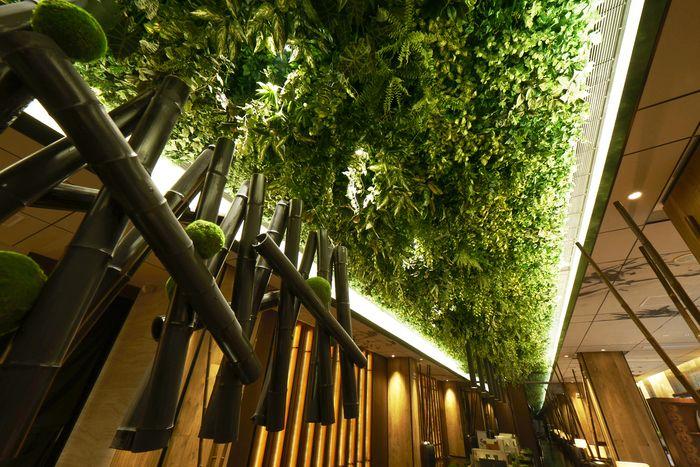 Green Belt Lounge (China)