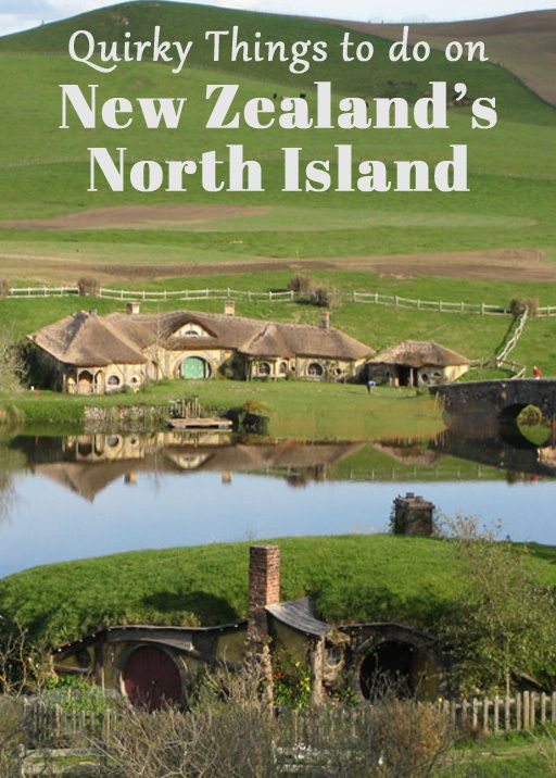 Quirky Things to Do on New Zealand's North Island Been there, done it, got the T-shirt! THE GREEN DRAGON at HOBBITON :D