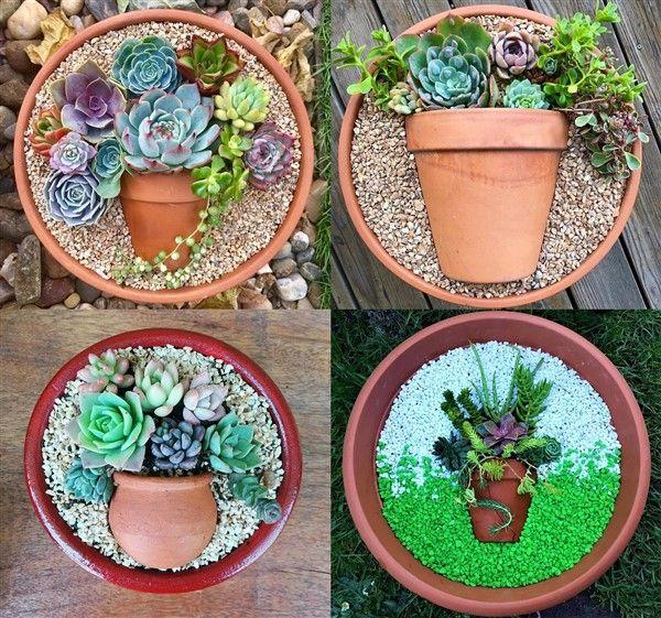 Charming Succulent Pot In A Pot Ideas Succulents Succulent Pots Creative Planter