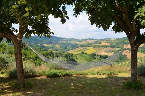 Petritoli, Le Marche Possibilmente l'amaca la maggior parte perfettamente collocato in il mondo!  Possibly the most perfectly placed hammock in the world!