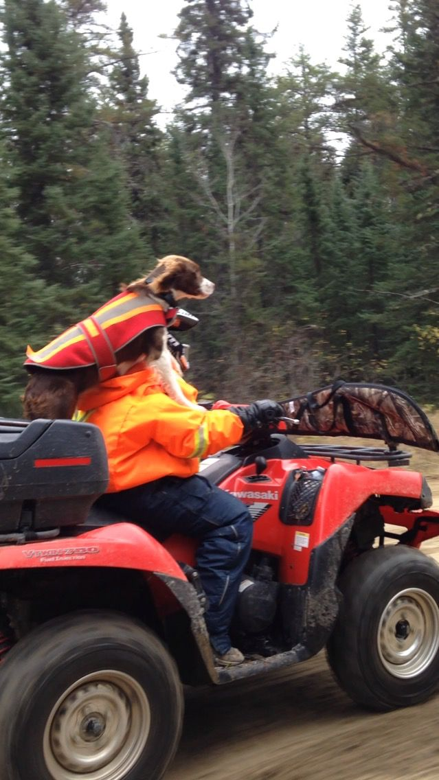 Enjoy the quad ride back to the cottage after a morning hunt