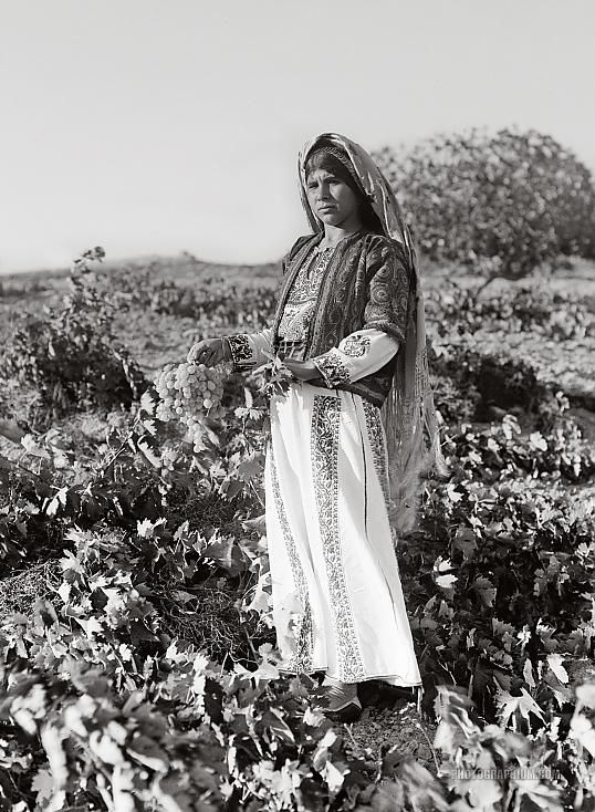 A peasant girl holding a bunch of grapes. Ein Yabrud, Palestine. 1937 September.