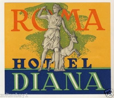 Old Luggage Label Kofferaufkleber Etiquette Etichetta Hotel Diana Roma Italy | eBay