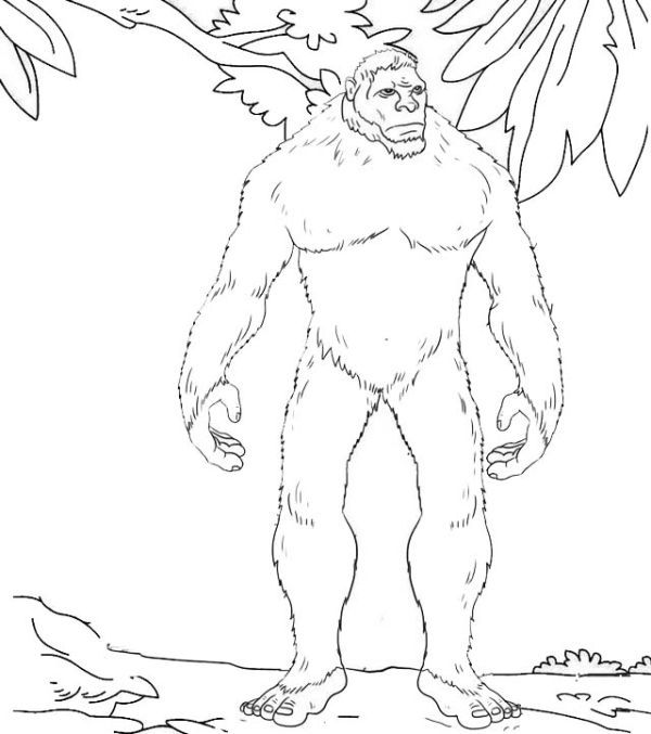 Printable Yeti Coloring Pages Free Coloring Sheets Snowman Coloring Pages Disney Coloring Pages Coloring Pages