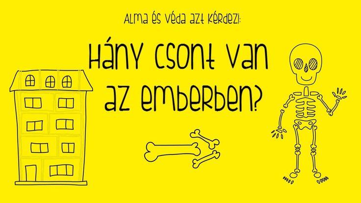 Alma és Véda: Hány csont van az emberben?