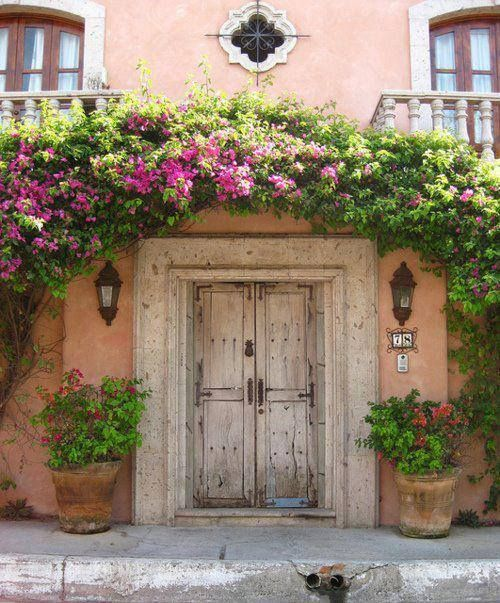 pink wall & white door and bougainvilleas, beautiful arch.. Bucerias…