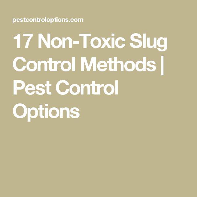 17 Non-Toxic Slug Control Methods | Pest Control Options