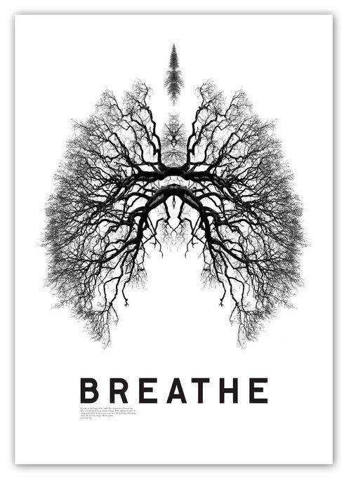 #lungs #breathe #breath