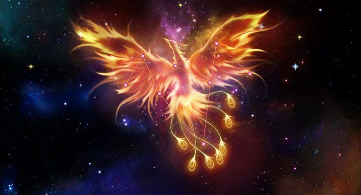 Phoenix Constellation   Saint seiya   Pinterest   Constellations ...