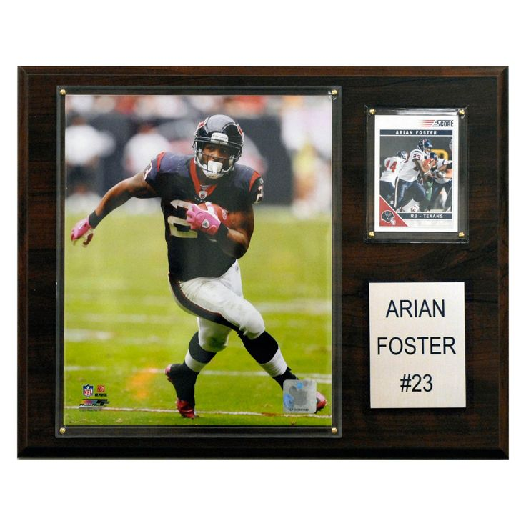 NFL 12 x 15 in. Arian Foster Houston Texans Player Plaque - 1215AFOSTER