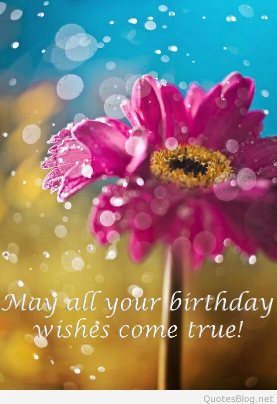 May all birthday wishes come true