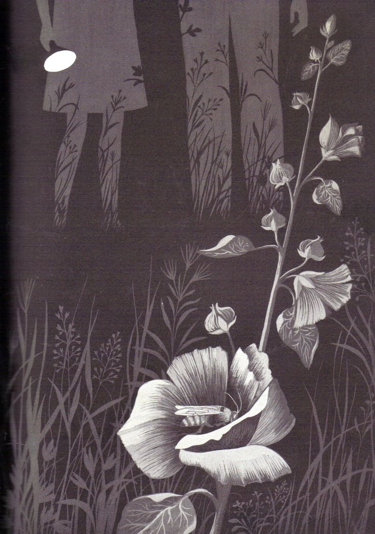 """""""In the Middle of the Night"""" by Aileen Fisher, illustrated by Adrienne Adams, 1965 (https://www.etsy.com/listing/157735696/in-the-middle-of-the-night-illustrated?ref=listing-shop-header-0)"""