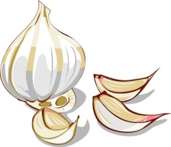 """Garlic.    Many call it the """"Stinking Rose"""" with fondness, but for individuals with a garlic intolerance or garlic allergy, garlic just plain stinks!..."""
