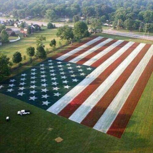 OLD GLORY...WOW,.....ISN'T THIS SOMETHING....GOSH,...I LOVE THIS.....BEAUTIFUL                                                                                                                                                                                 More