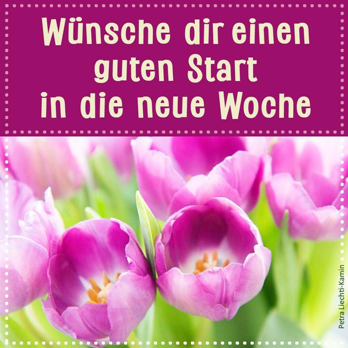 Neue woche die guten start guten morgen in und ein Guten Morgen