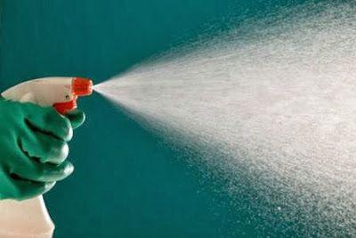 Fatto in casa: Come realizzare un antimuffa spray efficace, natur...