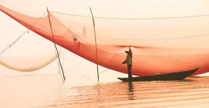 """""""Se regali un pesce a un uomo lo sfami per un giorno, se gli insegni a pescare lo sfami per tutta la vita"""" http://www.wonderful.it/blog/crescita-personale-non-regalate-pesci/"""