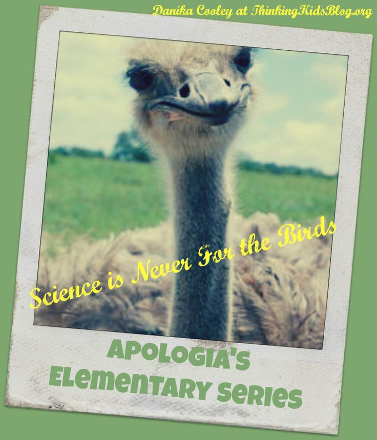 Science is Never for the Birds ~ Apologia's Elementary Series  Danika Cooley at ThinkingKidsBlog.org