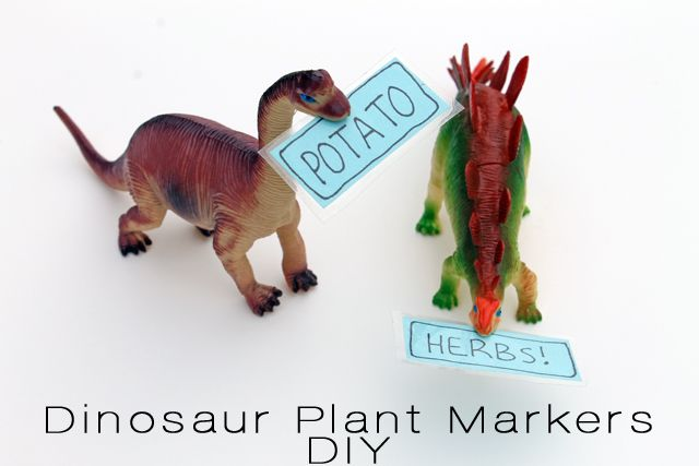 punk projects: Dinosaur Plant Markers DIY Okay, these are the best I've seen....use a craft knife to cut a slit in the mouth of little toy dinos and glue the markers (laminated with contact paper---could also use clear packing tape).