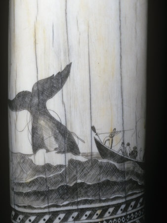 Sperm whale resources in the 1800s will not