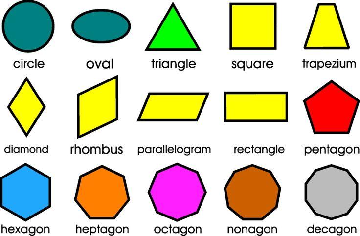 Shape Can Be In Geometric Or Organic Shape Design