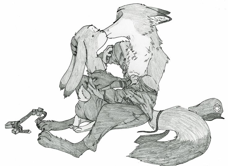 Judy's Art Book — ziegelzeig: A new commission for CreweFox… I...